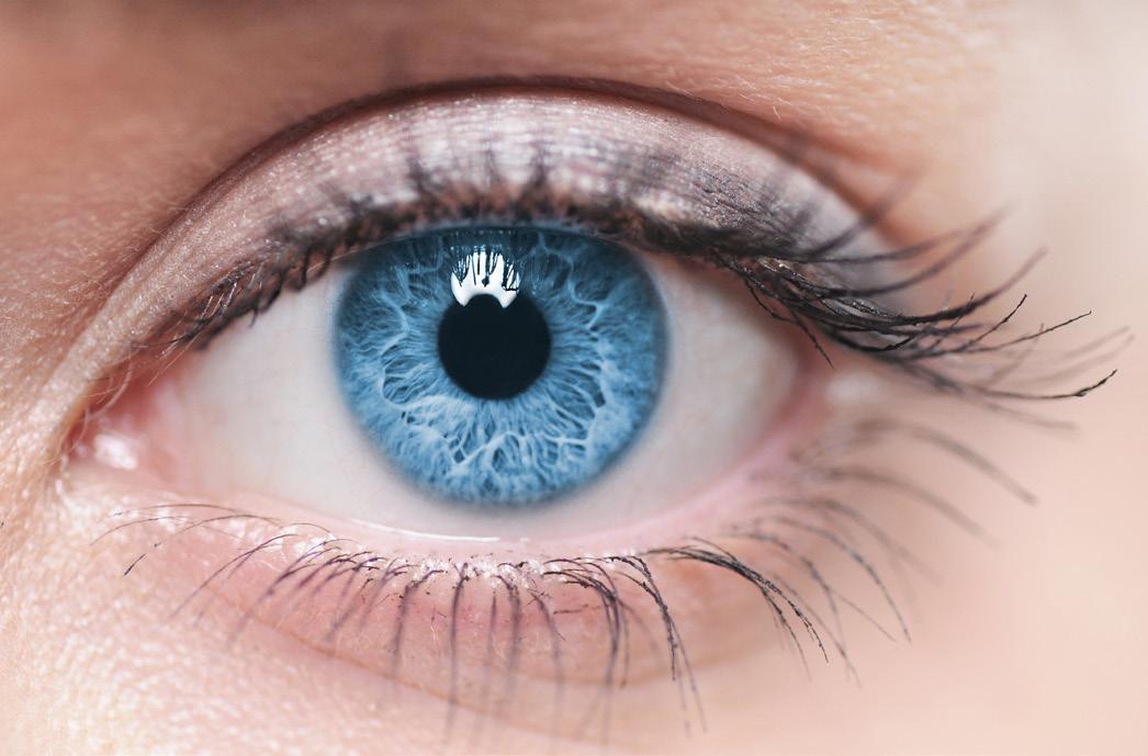Le glaucome, ce voleur de vision